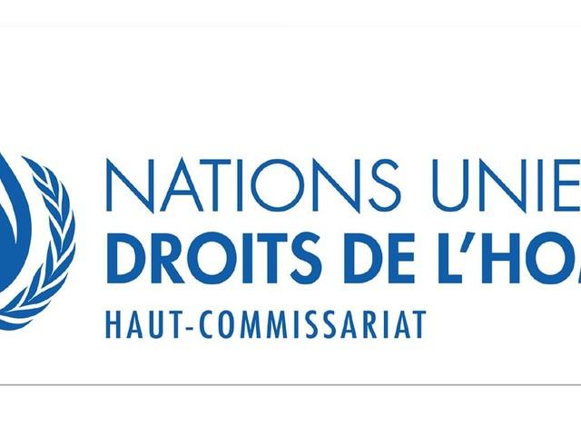 Deux experts de l'ONU épinglent la France et sa future loi antiterroriste