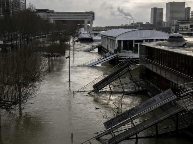 """Sur la Seine à Paris, des commerçants en """"chômage technique"""""""