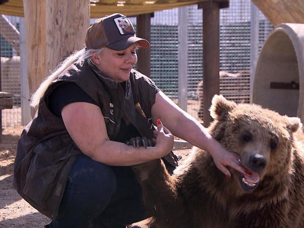 Document inédit le 14 février sur C8 : La Tanière, le zoo-refuge de l'espoir.