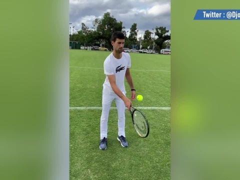Tennis - WTF - Open d'Australie : Novak Djokovic très adroit aux jongles