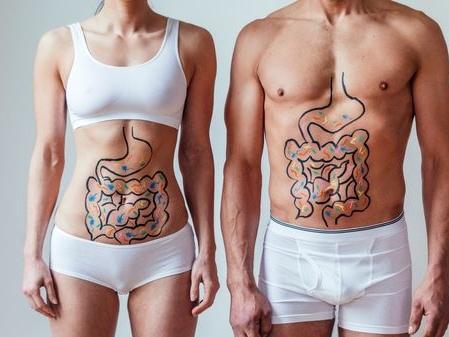 Microbiote intestinal : vers une nouvelle médecine ?
