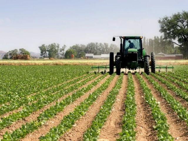 Dubaï : les opportunités agricoles au Maroc présentées aux investisseurs