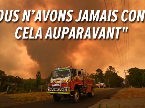 """Situation """"catastrophique"""" en Australie: l'équivalent de la Belgique parti en fumée, les hôpitaux débordés (vidéo)"""