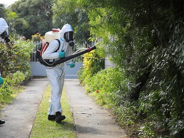 Trois précédents décès classés comme liés à la dengue, soit un total de 22 depuis le début de l'année