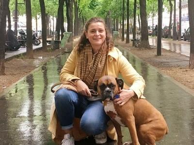 The City Dog:la solution de conciergie d'animaux domestiques idéale!