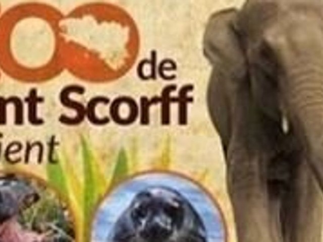 Bretagne: la collecte pour acheter un zoo et libérer les animaux a récolté 650.000 euros