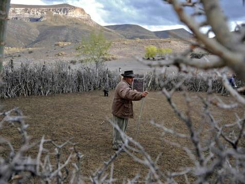 Sur les terres du Malbec argentin, les élevages de chèvres ont soif