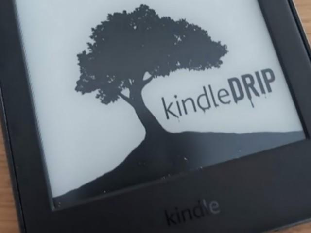 Il a piraté un Kindle et le compte Amazon lié... grâce à un e-book piégé
