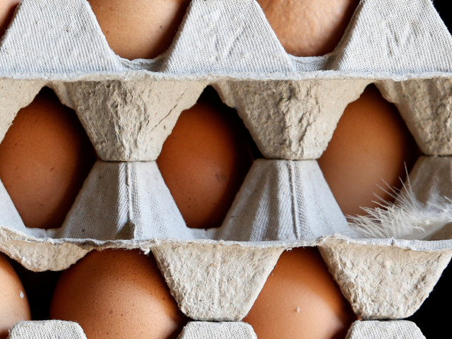 Œufs contaminés en Europe: L'ONSSA rassure les consommateurs marocains