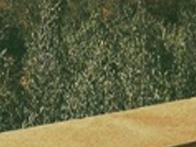 David Hallyday sans cœur, coup de canif contre Jade, encore humiliée (photo)