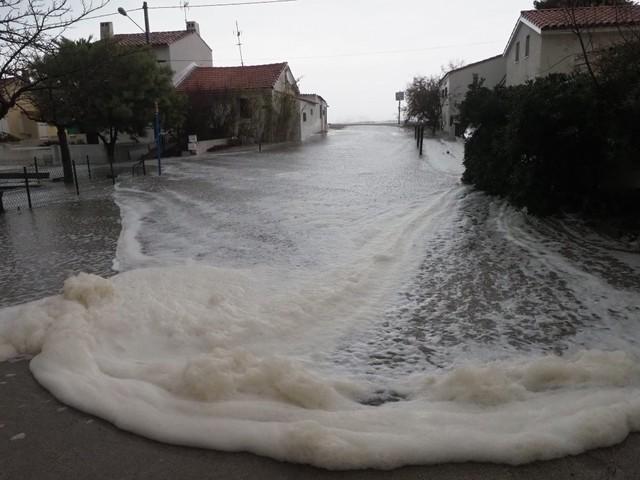 """La tempête """"Gloria"""" arrive dans les Pyrénées-Orientales, 1.000 foyers sans électricité"""