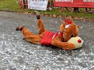 Câlin sur le ring, Pères Noël en baskets... Les photos drôles ou insolites du week-end lorrain