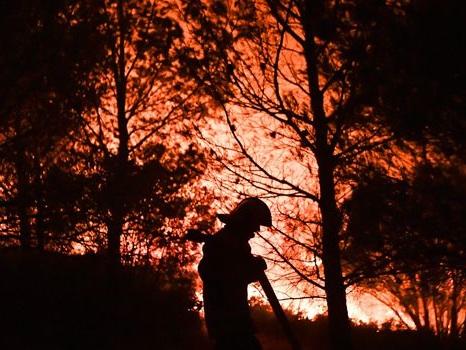 Plus de 240 hectares brûlés près d'Aubagne, des vacanciers évacués