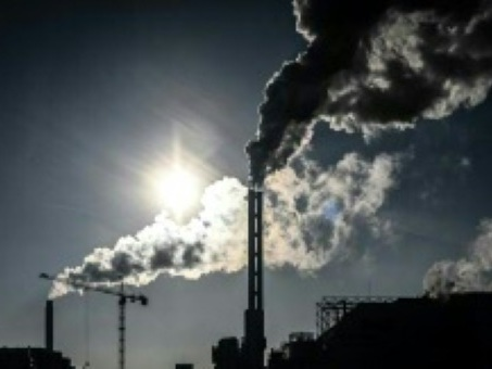 """Le gouvernement va créer un """"délit d'écocide"""" pour punir les atteintes à l'environnement"""