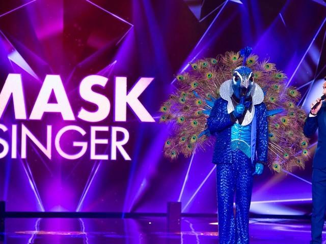 """""""Mask Singer"""" : le divertissement déjanté de Camille Combal débarquera le 8 novembre sur TF1"""