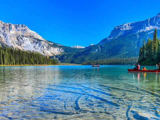 PVT Canada 2020 : où en sommes-nous ?