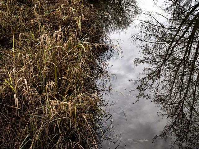 Des points d'eau ont été effacés des cartes IGN pour ne pas avoir à les protéger des pesticides