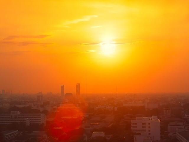 Ces cinq dernières années ont été les plus chaudes enregistrées sur Terre