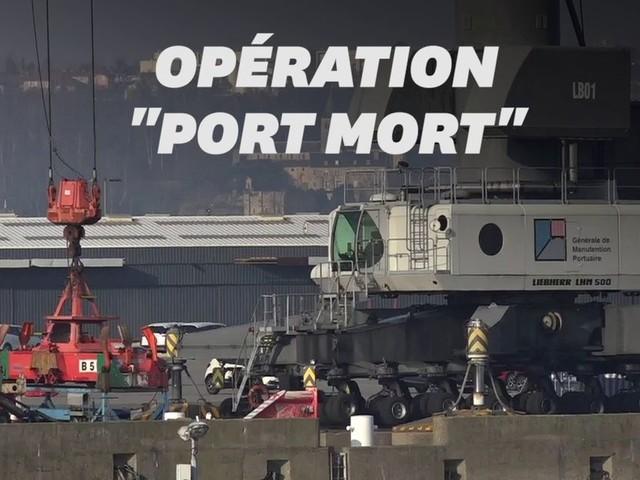"""Au Havre, l'opération """"port mort"""" est la seule solution pour être entendu"""