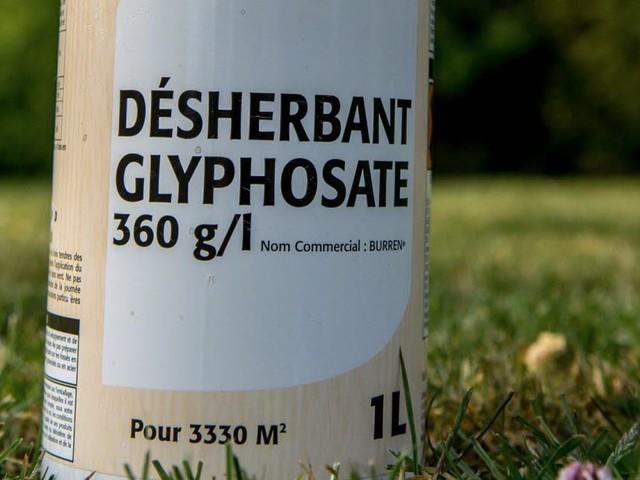 Glyphosate: retrait de produits en France fin 2020, et après?
