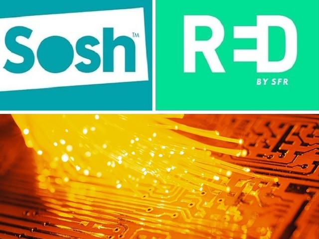 Box fibre en promo : qui de RED ou de Sosh propose le meilleur forfait internet ?