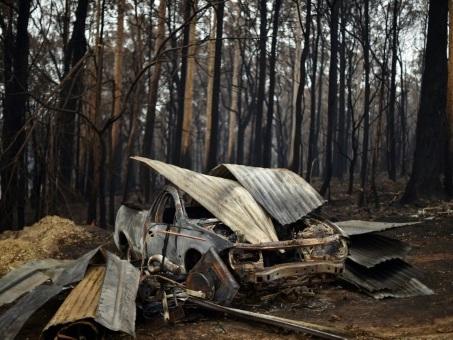 Australie : brasiers vus de l'espace, montages et animaux...tour d'horizon des images hors contexte ou détournées