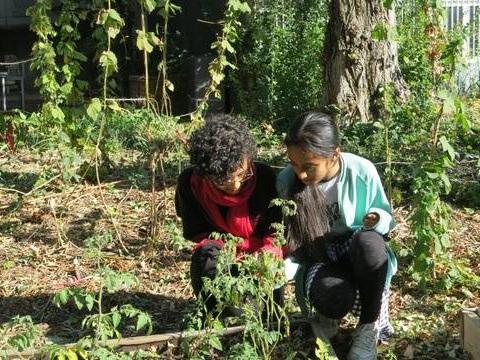 Développement durable à l'école: A quoi vont servir les éco-délégués?