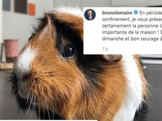 Bruno lunaire