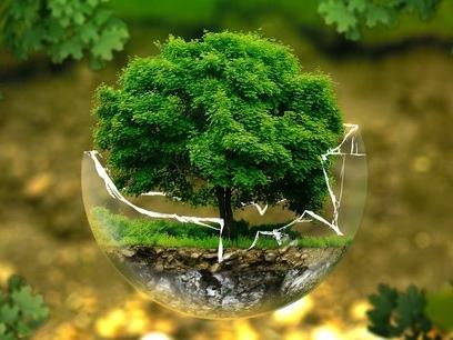 Urgences écologiques et sociales : la société civile est prête à passer à l'action