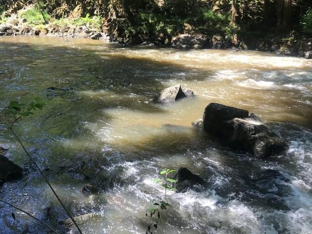 CARTE : Premières restrictions de prélèvement d'eau en Dordogne