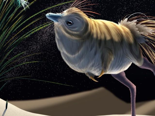 Ce dinosaure exceptionnel pouvait chasser de nuit avec efficacité: quel était son mode de vie?