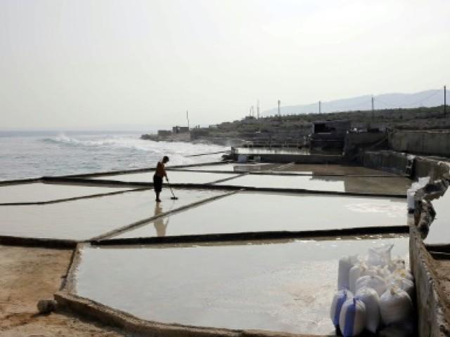 Au Liban, d'irréductibles paludiers défendent leurs derniers marais
