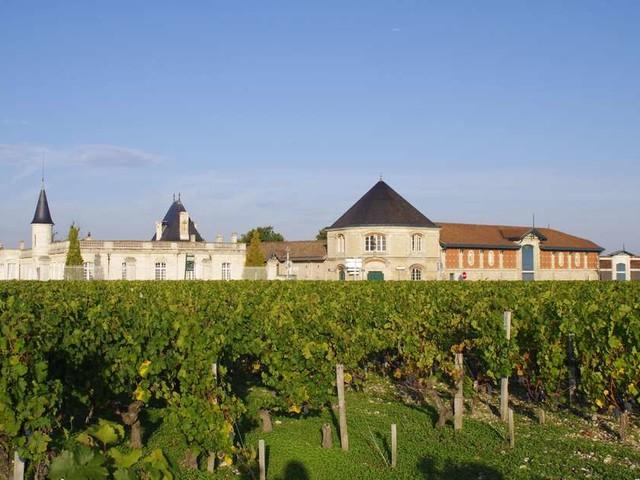 """Bordeaux Tasting : au château Durfort Vivens, """"une approche hédoniste"""" de la dégustation"""