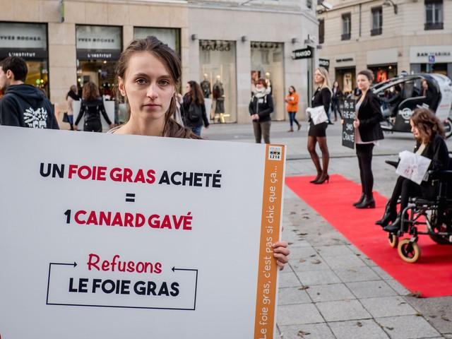 Réveillon : les anti-foie gras nous gavent !