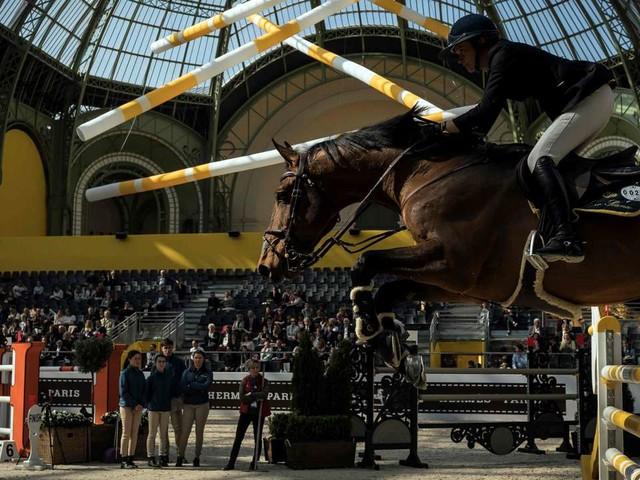 Saut Hermès: les petites mains du saut d'obstacle