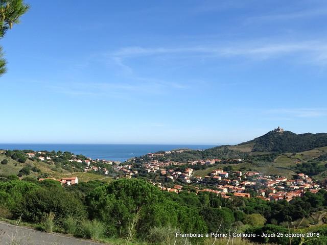 Collioure - Pyrénées Orientales -