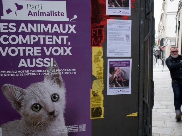 Ce que le Parti Animaliste va pouvoir faire de ses 1% au 1er tour des législatives 2017