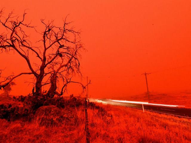 """""""Chaque année, l'intensité des feux augmente"""" : à l'heure où l'Australie brûle, l'avenir des forêts françaises en question"""