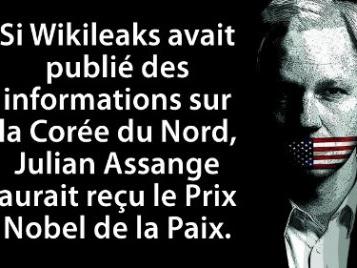 Retour sur l'étrange et persistante désinformation autour de « l'affaire » Julian Assange (le Fake News dans toute sa splendeur)