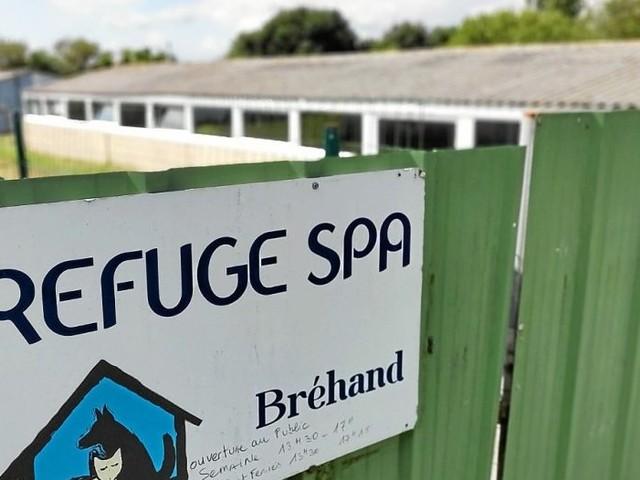Bréhand: macabre découverte au refuge SPA du Penthièvre