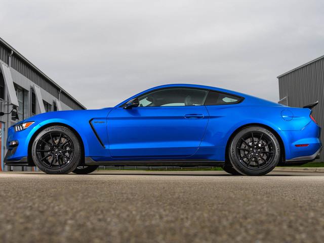 Les Ford Mustang GT350 et GT350R abandonnées ?