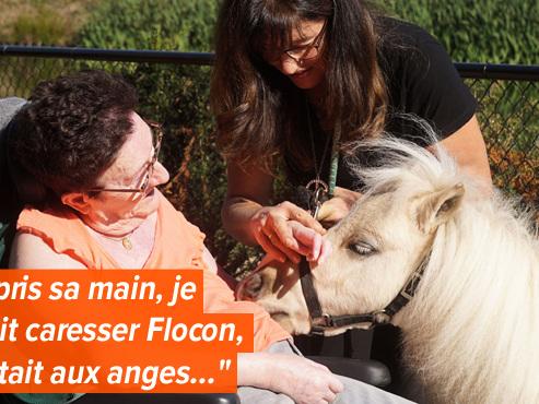 """Manuela emmène Flocon, son poney de 3 ans, dans une maison de retraite: """"Une façon d'amener un peu de joie et de réconfort"""" (vidéo)"""