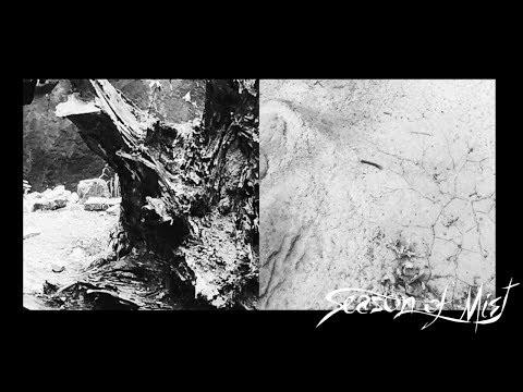 Du clip pour Esben And The Witch avec Golden Purifier issu de Nowherequi sortira le 16 novembre chez...