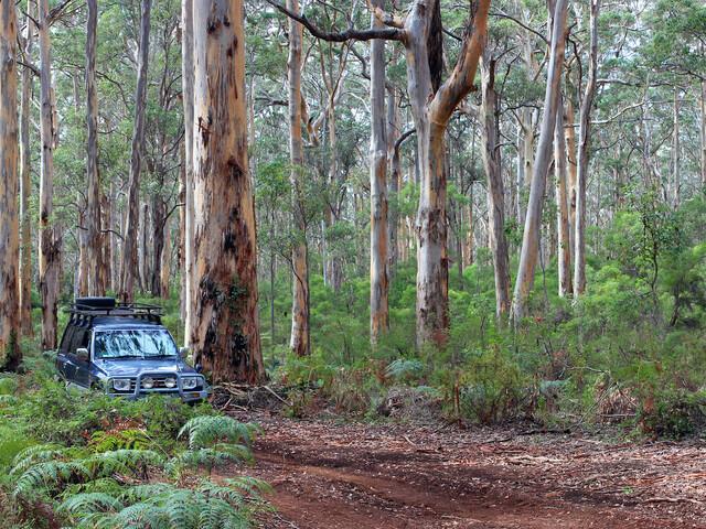 Changements pour le PVT Australie : vous pourriez faire jusqu'à 3 PVT !