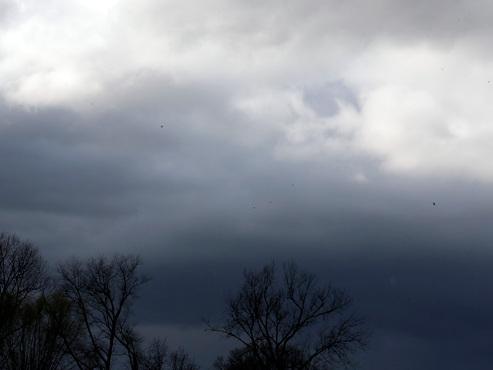 Prévisions météo pour la semaine: la pluie comme d'hab' ET une baisse des températures