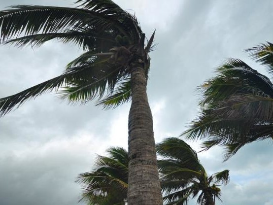 Maria/catastrophe naturelle : « Personne ne sera oublié », assure Girardin