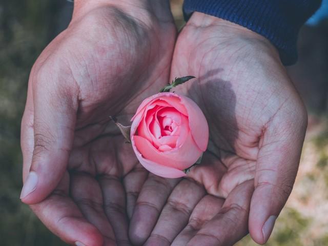 29 attitudes à adopter pour votre bien