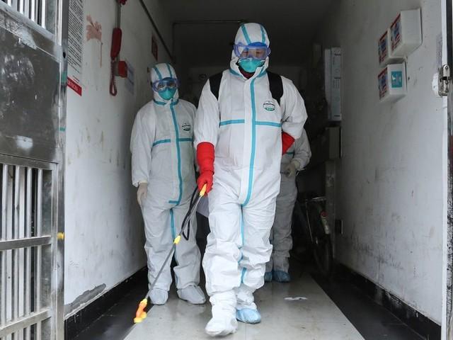Face au nouveau virus en Chine, la Mongolie ferme sa frontière