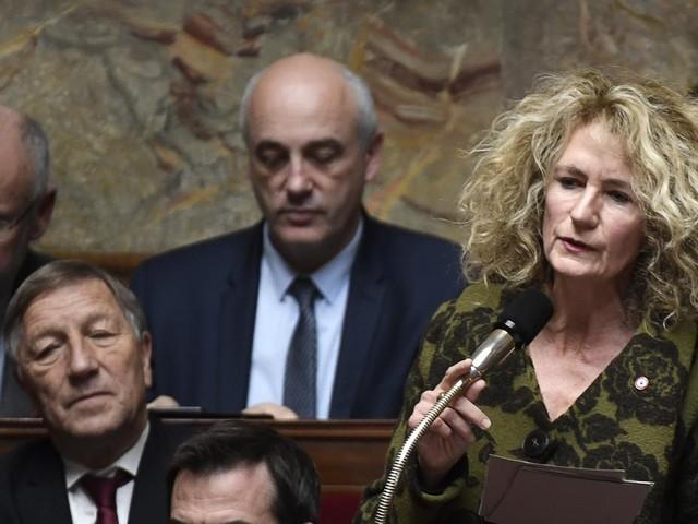 """""""Envahir les permanences parlementaires"""" : des députés réclament des poursuites contre Martine Wonner"""