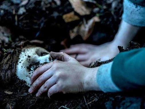 The Boy 2, La Malédiction de Brahms : découvrez le premier trailer avec Katie Holmes